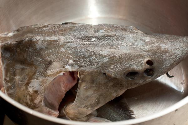 рыбный бульон. голова осетра