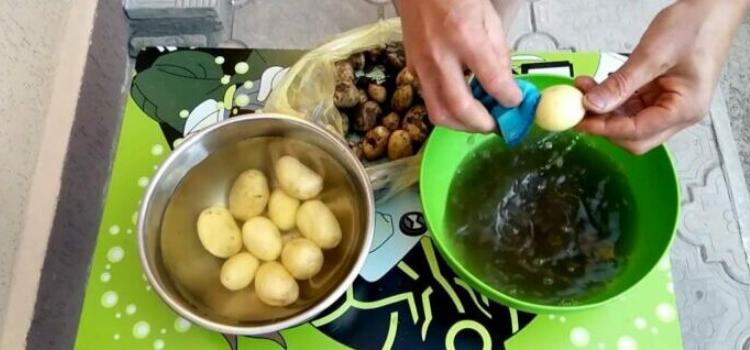 чистим молодой картофель. Что приготовить из весенних овощей?