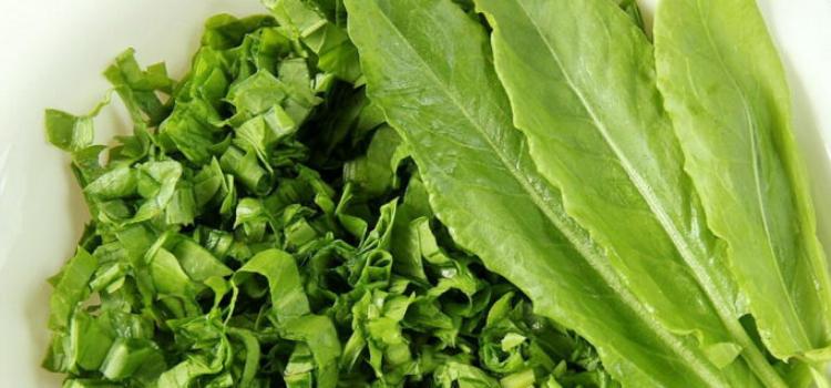 что приготовить из весенних овощей?